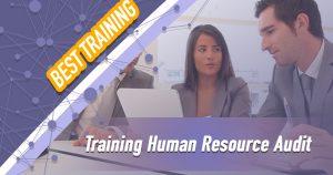 Training Human Resource Audit