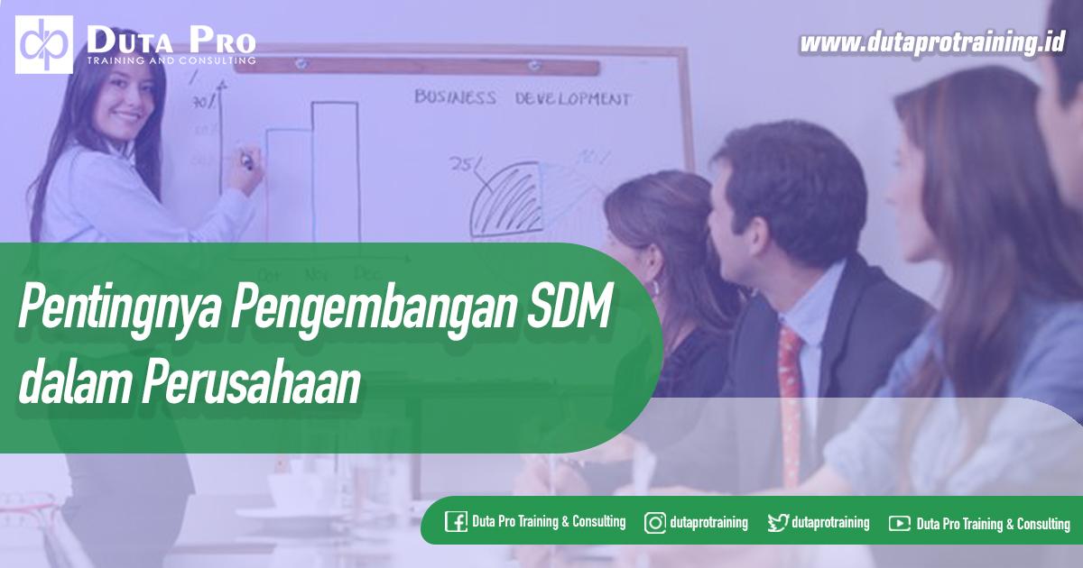 Pentingnya Pengembangan SDM dalam Perusahaan Blog Duta Pro Training and Consulting