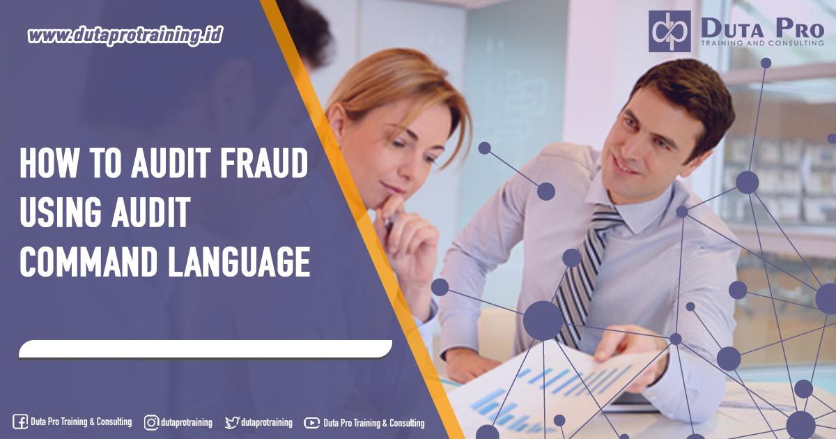 Training How to Audit Fraud using Audit Command Language