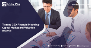 Training CEO Financial Modeling- Capital Market and Valuation Analysis
